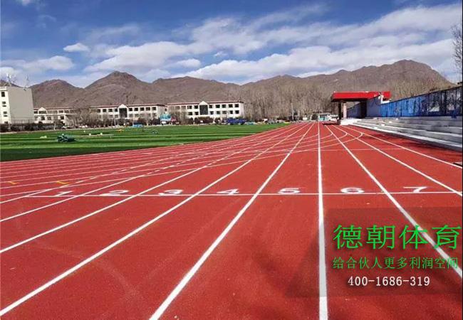 四川新国标塑胶跑道材料